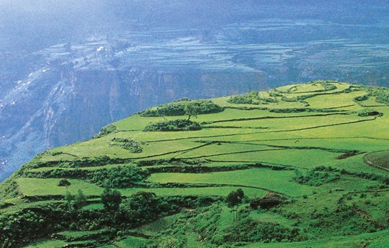 Koning Aap: Rondreis ETHIOPIË - 30 dagen; Wierook en schotellippen