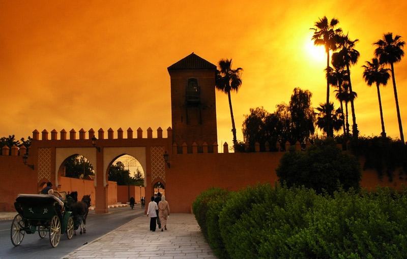 Koning Aap: Rondreis MAROKKO - 28 dagen; Sahara, kasba's en strand