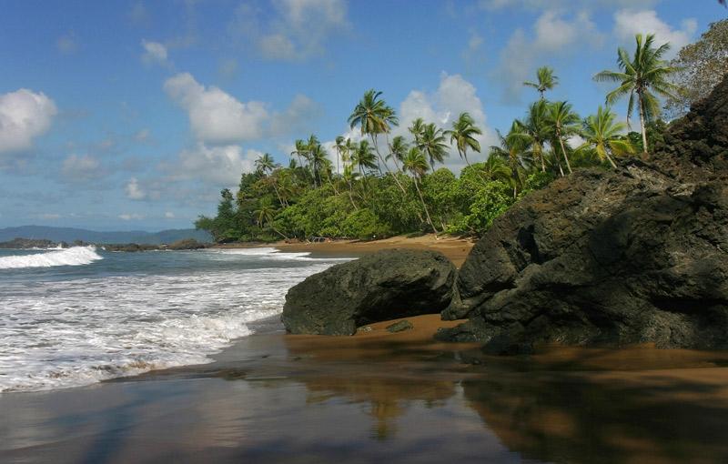 Koning Aap: Rondreis COSTA RICA - 21 dagen; 'El Dorado' voor natuurliefhebbers