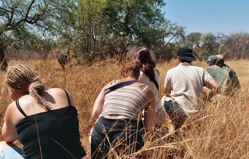 Koning Aap: Rondreis ZIMBABWE & ZAMBIA - Internationale Kampeerreis - 20 dagen; Schitterend Zimbabwe en Zambia / internationale groep