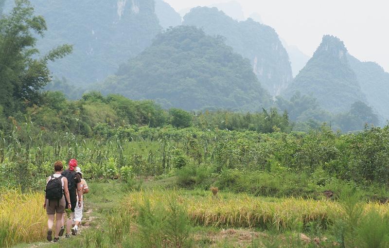 Koning Aap: Rondreis CHINA STEDEN EN DORPEN - 29 dagen; Struinen door rijstvelden