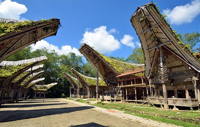 Koning Aap: Rondreis INDONESIË: SULAWESI - 25 dagen; Als Robinson Crusoë op Celebes