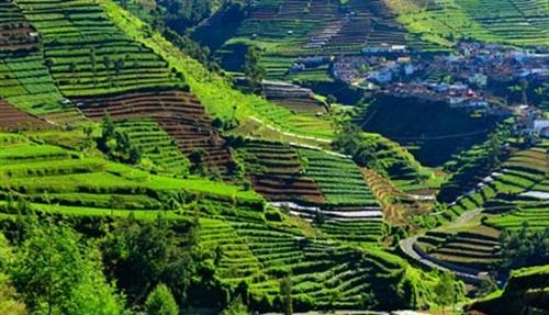 Indonesien Singlereise (Bild: Shoestring International)