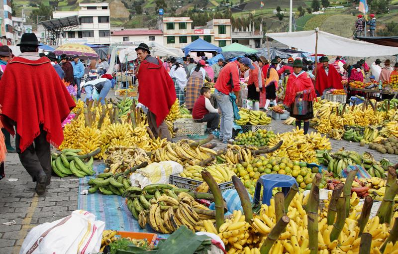 Shoestring: Groepsreis Ecuador in 2 weken; De Andes in het klein