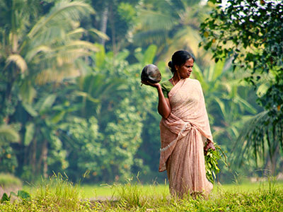 Groepsreis Zuid-India 'on a Shoestring' ; Een kruidige sensatie