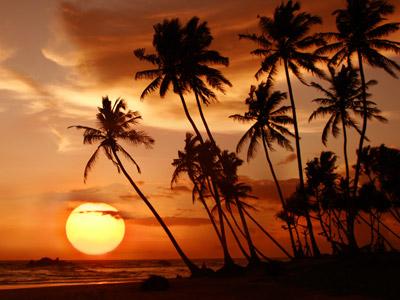 Groepsreis Sri Lanka 'on a Shoestring'; Ontmoeting met hindoes e