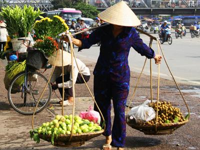 Shoestring: Groepsreis Vietnam in 2 weken ; Parel van Indochina